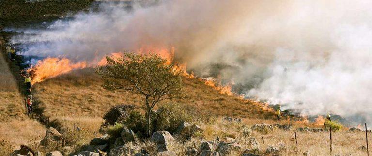 Η Πυροσβεστική απαγορεύει την καύση λόγω των θυελλωδών ανέμων