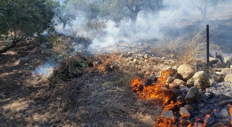 Δυο φωτιές σε αγροτικές εκτάσεις, παρά τις εκκλήσεις της πυροσβεστικής
