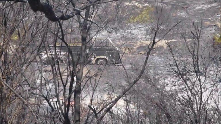 ΒΙΝΤΕΟ: 4.000 στρέμματα έκαψε η φωτιά στη Σάμο