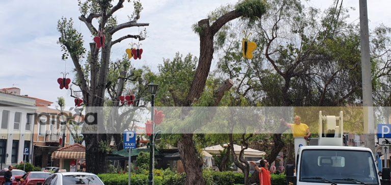 Πεταλούδες και τουλίπες έφεραν την άνοιξη στο κέντρο της πόλης (vid)